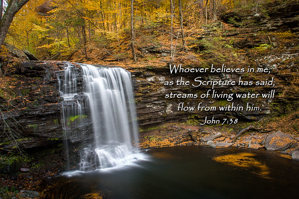 Whoever believes in me, as Scripture has said, rivers of living water will flow from within him ~ John 7:38  Photo taken at Ricketts Glen State Park.