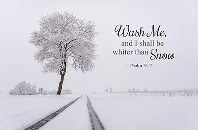 Wash Me, and I shall be white than snow ~ Psalm 51:7 Photo taken near Limestoneville, Pennsylania.