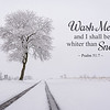 Wash Me, and I shall be white than snow ~ Psalm 51:7<br /> Photo taken near Limestoneville, Pennsylania.
