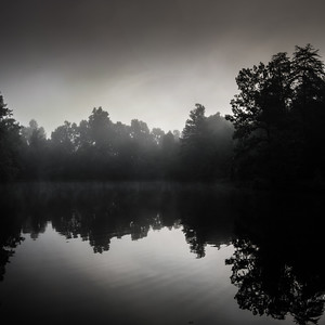 Rorschach morning at the pond with heavy mist