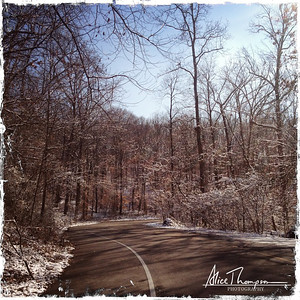 Winter Walk in Iroquois Park