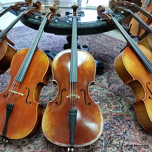 Cello Shopping - Cincinnati, OH