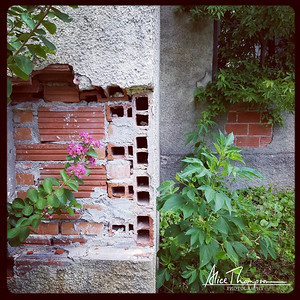 Urban Decay - Waco, TX