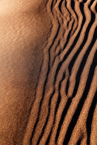 Sand Ripples