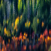 """Autumn Watercolors"""
