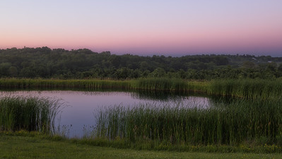 Pond Sunset #1
