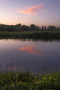 Pond Sunset #2