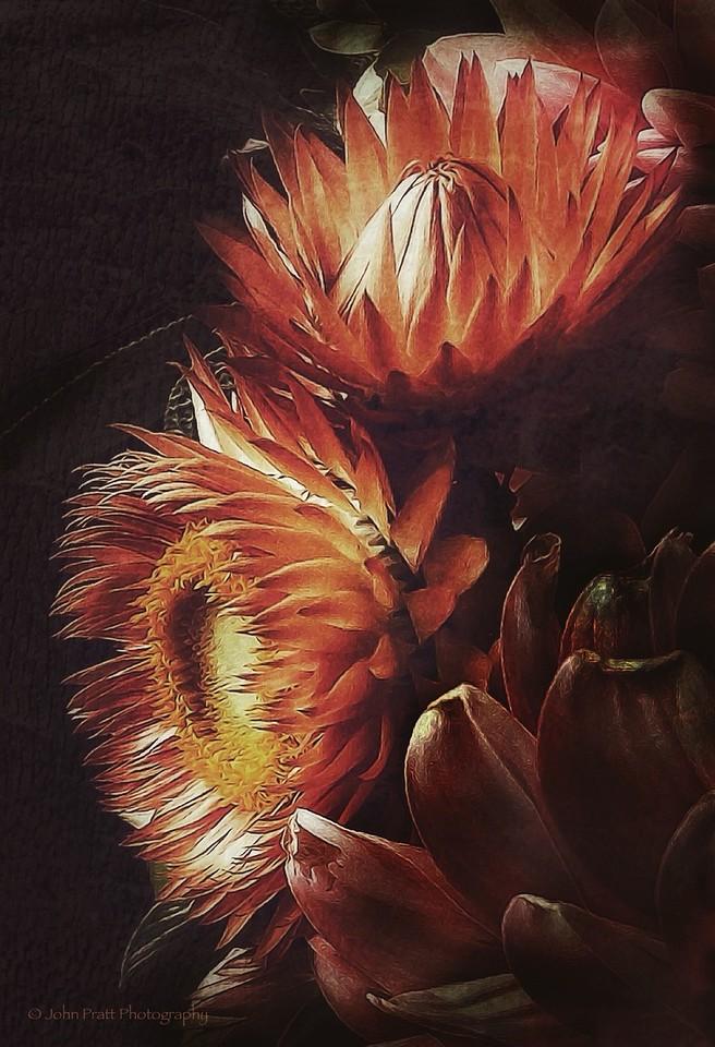 Bouquet Detail #1