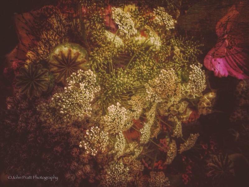 Farmer's Market Bouquet