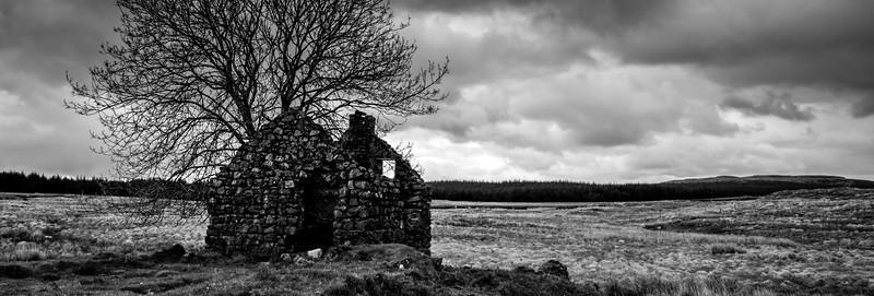 Lonley Hut
