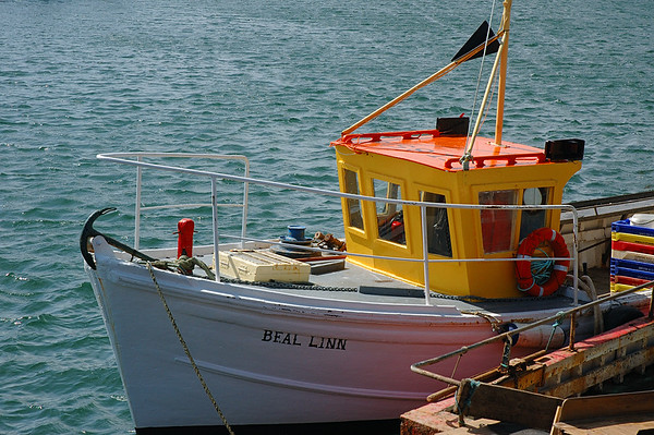 Real Boat Not Toy Boat