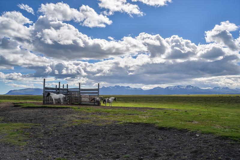 Situé entre deux rivières glaciaires, Jökulsá á Brú et Lagarfljót et entouré par les montagnes de l'Est, Husey est vraiment un coin TRES isolé.