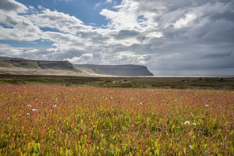Látrabjarg. Connu pour ses falaises abritant les oiseaux , c'est un endroit incroyablement beau, la sérénité du lieu m'a subjugué.