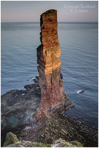 Old Man of Hoy sea stack (6)