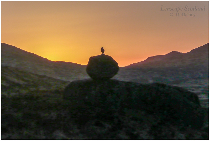 Erratic boulder silhouette, Kinloch Glen, sunset