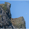 Boreray eastern cliffs (2)