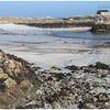Scarinish harbour 1