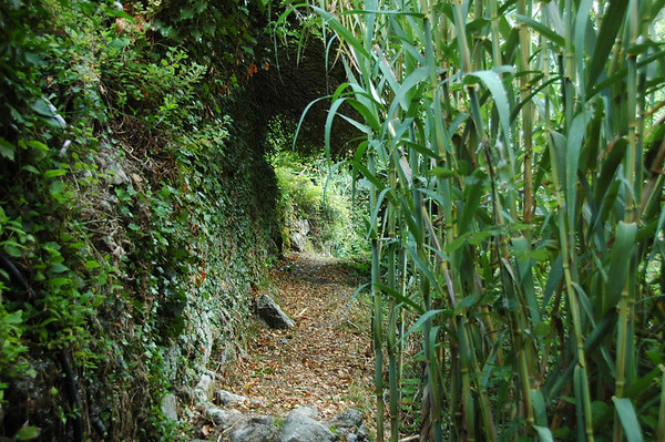 Path into valley behind Monterosso