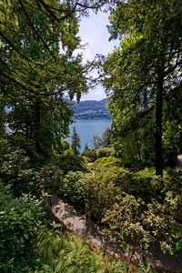 Villa Carlotta & Botanical Garden, Tremezzo, Lake Como, Italy (4)