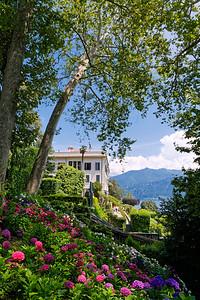 Villa Carlotta & Botanical Garden, Tremezzo, Lake Como, Italy (9)