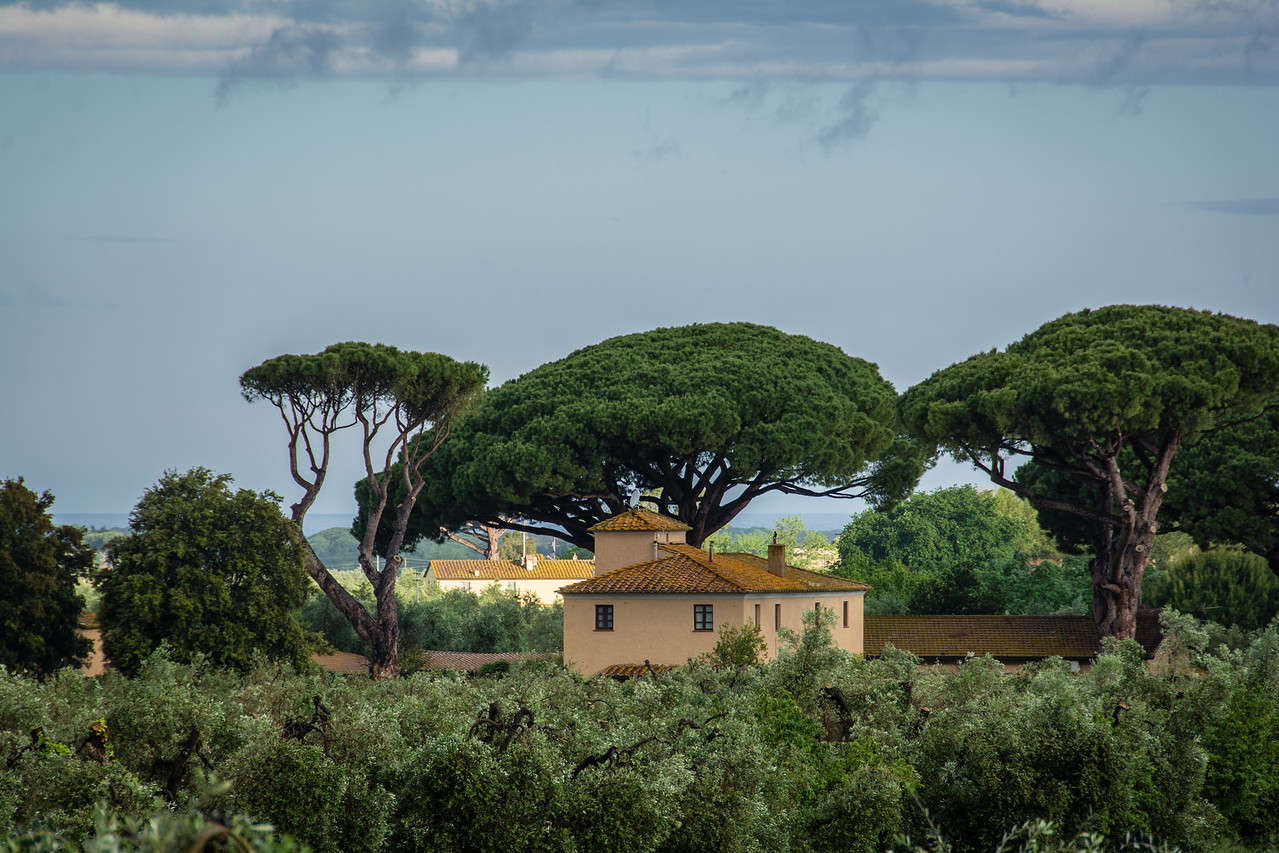 Tuscany by the Sea