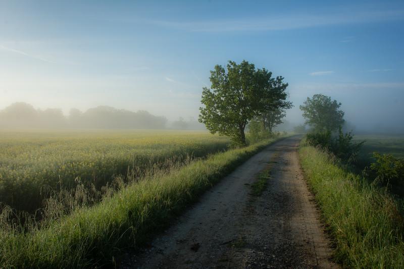 Umbria Morning