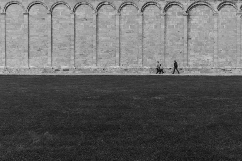 Pisa Dog Walkers