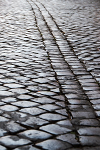 Cobblestone Beauty