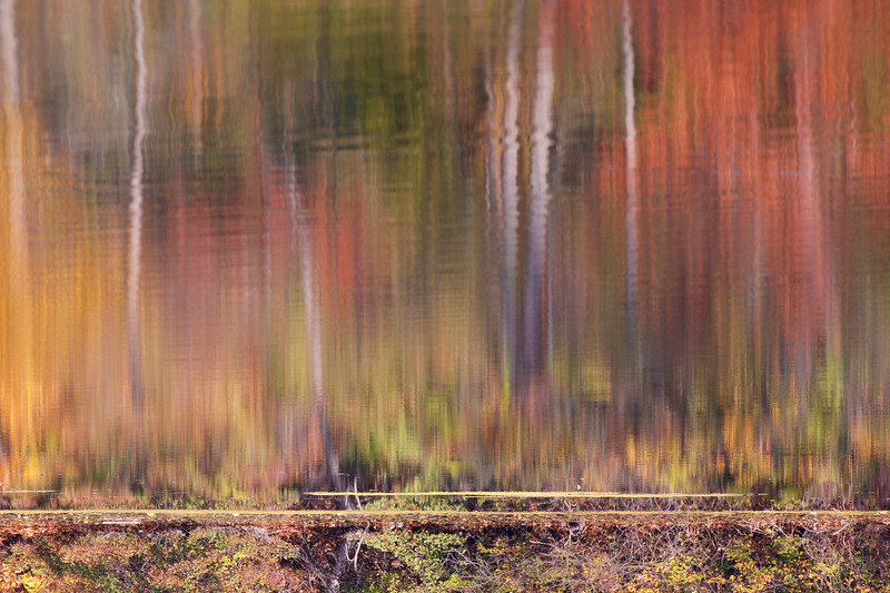reflections of the fall ~ Huron River