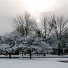 a winter's day ~ Michigan