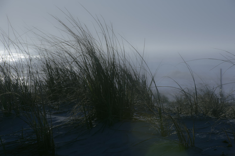Solitude of the Sea ~ Southern Outer Banks