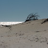 on the beach ~ Southern Outer Banks