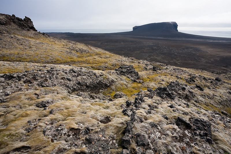 "Lichens, moss and lava with the crater of Eggoya in the background. Eggoya or ""Egg Island"" was a seperate island until and eruption in the 1800's connected it to the mainland. Jan mayen"
