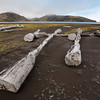 Drift wood near the north lagoon, Jan Mayen