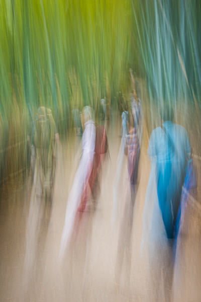 Reaching spirits of the bamboo forrest. Arashiyama Bamboo forrest, Kyoto, Japan. Abstract