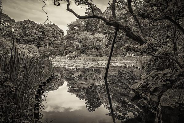 Heian Shrine Gardens, Kyoto, Japan
