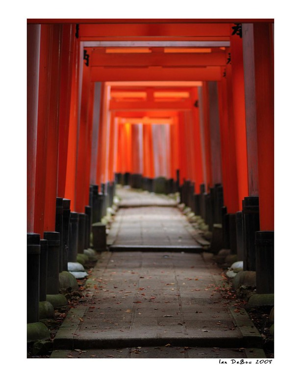 """Perfect light on the amazing Torii trails of the Fushimi Inari Shrine.  This is my favorite place in Kyoto Japan.  My other images of Fushimi Inari:  <a href=""""http://www.ianz28.smugmug.com/gallery/668493_aU6zX#61903245_PEPWb-A-LB"""">http://www.ianz28.smugmug.com/gallery/668493_aU6zX#61903245_PEPWb-A-LB</a><br />  <a href=""""http://ianz28.smugmug.com/gallery/363615_ng25V#53968667_KXKPQ-A-LB"""">http://ianz28.smugmug.com/gallery/363615_ng25V#53968667_KXKPQ-A-LB</a>"""