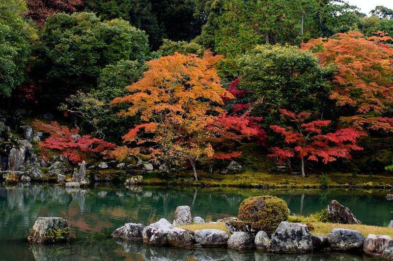 Fall colors of Arashiyama