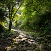 Le vieux chemin du Tokkaido