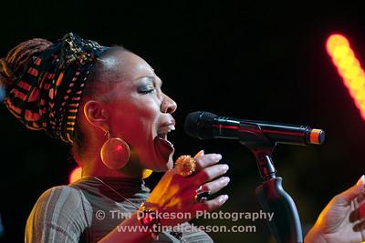Vienne Jazz Festival 2009