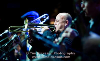 Steven Bernstein (Trumpet)