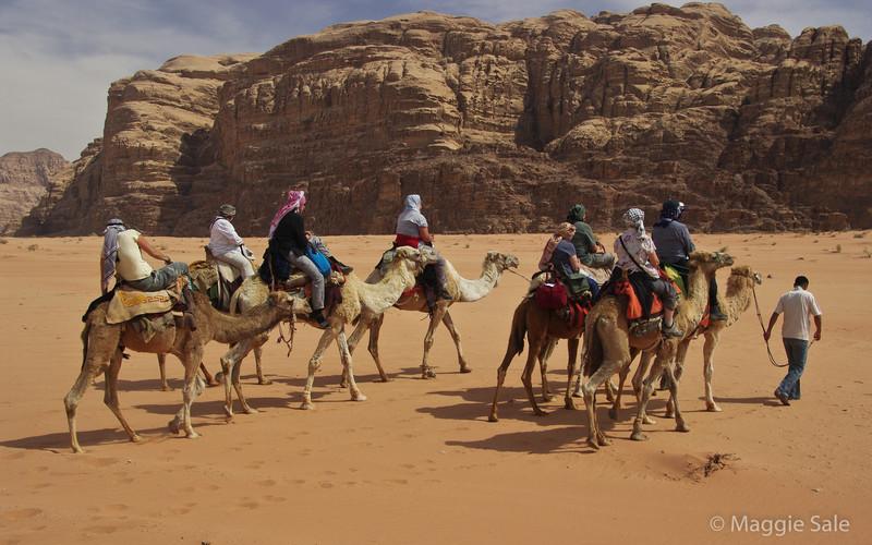 Wadi Rum - camel trek to bedouin camp