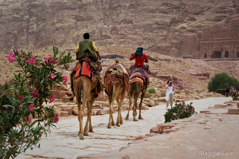 Petra - camel riding