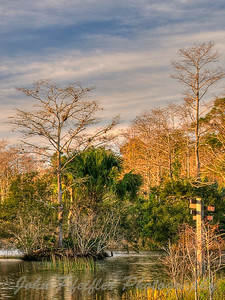 _DSC5228_29_30_31_32_tonemapped02mm_2