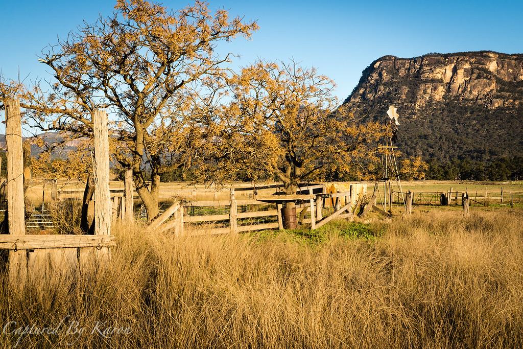 Old Cattle Yards, Glen Davis
