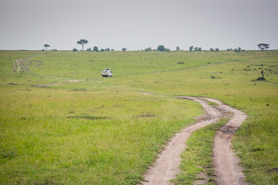 Safari Mini-Bus | Maasai Mara, Kenya