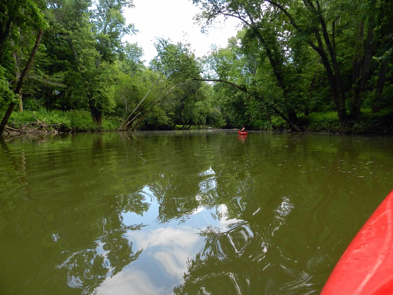 creek scenery
