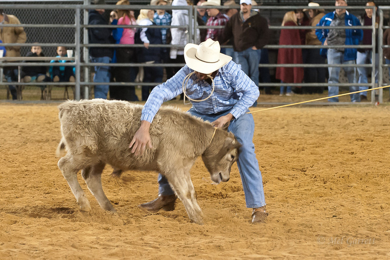 20120225-Katy_Rodeo_2-25-12_Sat-0333