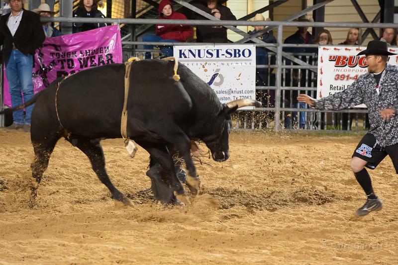 20120225-Katy_Rodeo_2-25-12_Sat-0612