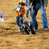 20120225-Katy_Rodeo_2-25-12_Sat-0174